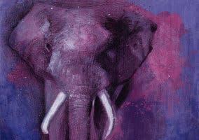 The-Purple-Elephants